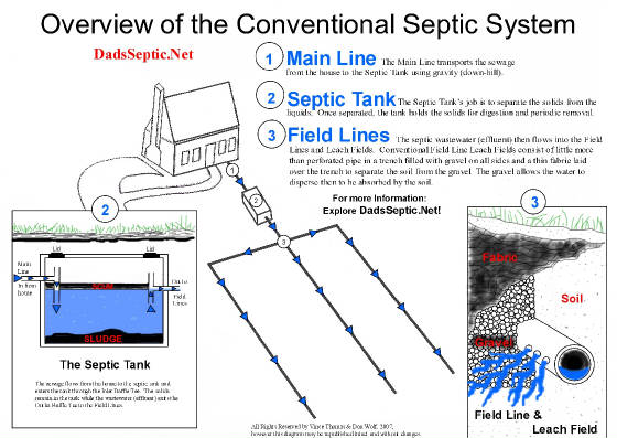 Field line problems for Gravity septic